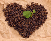 Heart composed of coffee and green leafage. On brown paper background Royalty Free Stock Image