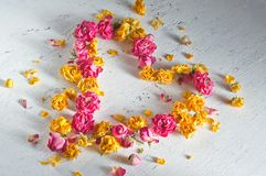 Heart is composed of dried roses Royalty Free Stock Photography