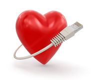 Heart and Computer Cable (clipping path included) Stock Photos