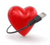 Heart and Computer Cable Stock Images