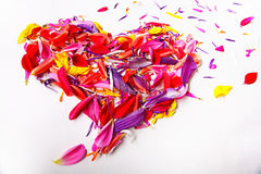 Heart of the concept of flower petals Stock Photos