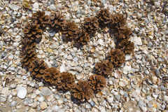 Heart of cones on the beach. On seashells Stock Photography