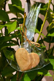 Heart Cookie growing on a tree. Cookie heart in a gift plastic bag hanging on a tree Stock Images