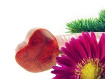 Heart from coral stone Stock Photography