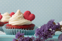 Heart cupcakes for Valentine`s Day Stock Photography