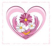Heart and the daisy. Illustration of decorative heart with the daisies against the white background Stock Photography