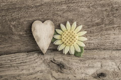 Heart and daisy flower on wooden background Royalty Free Stock Photos