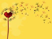 Heart dandelion Royalty Free Stock Photo