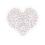 Heart from dandelion seeds Stock Photos