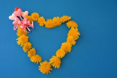 Heart of dandelions. Beautiful bouquet of  yellow dandelions with pink hearts and bow on the blue table Stock Photos