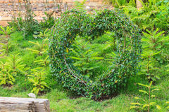 Heart decorated tree in the garden Royalty Free Stock Photos