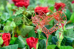 Heart decoration on flowers Stock Image