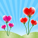 Heart design. Flower background with colorful heart, star, and wave pattern, element for design, vector illustration Stock Images