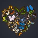 Heart design on dark background with morpho menelaus, graphium androcles, morpho rhetenor cacica, papilio demoleus