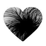 Heart design Royalty Free Stock Image