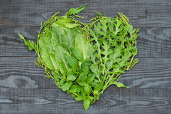 A heart of different green royalty free stock photography