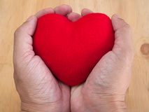 Heart disease ,Treatment of Heart Disease Stock Photography
