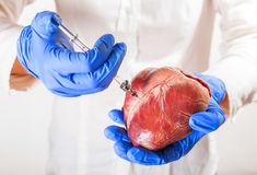 Heart disease and vessels Stock Image