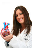 Heart Doctor Stock Image