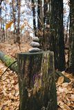 Heart drawn above trunk with three stones at the top, in the woo. Purple colored heart drawn above trunk with three stones at the top, in the woods Stock Photos