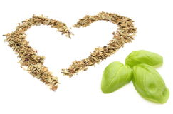 Heart of dried basil with green leaves on white background Stock Images