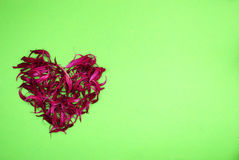 Heart of dried red flowers. On bright green background Royalty Free Stock Image