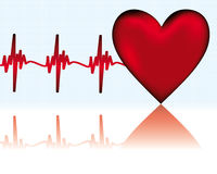 Heart ECG. Red Heart ECG  - vector illustration Royalty Free Stock Photos