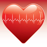 Heart with ekg . Stock Image