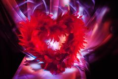 Heart from feathers