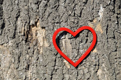 Heart Figure on Tree Trunk. Red heart figure on tree trunk on day light Royalty Free Stock Photos