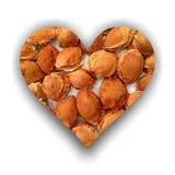Heart filled with apricot stones Royalty Free Stock Images