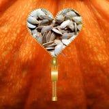 Heart filled with pumpkin seeds texture. Heart shape made of zip filled with pumpkin seeds, on a pumpkin texture background vector illustration