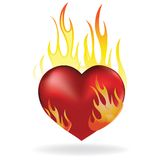 Heart in fire. Heart love in fire icon tattoo. Valentine day passion illustration Stock Images