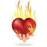 Heart in fire. Heart love in fire icon gift to woman. Valentine day passion illustration Stock Photos