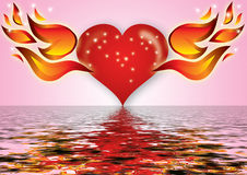 Heart and fire. Abstract valentines background, heart with water and fire Stock Images