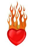 Heart with fire isolated on white. Red heart with fire isolated on white Royalty Free Stock Photos