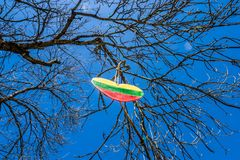 A heart with the flag of lithuania hangs on a tree royalty free stock photos