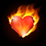 Heart flame. Vector illustration. Stock Photography
