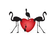 Heart with flamingos Royalty Free Stock Photos