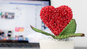Heart flower with online social media love concept. Stock Photo