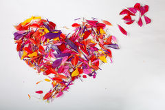 Heart of flower petals Stock Photography
