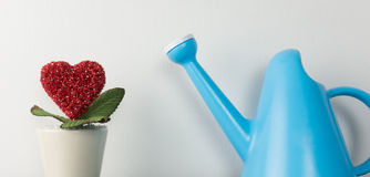 Heart flower pot with watering can for growing love Royalty Free Stock Photos