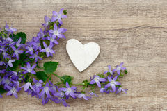 Heart and flower Stock Images