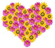 Heart of flowers Stock Photography