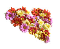 Heart from flowers Stock Photos