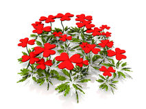 Heart flowers. On a white background Stock Photography