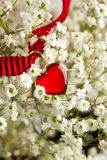 Heart and flowers Stock Image