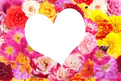 Heart flowers Stock Image