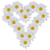 Heart from flowers Royalty Free Stock Image
