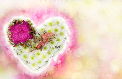 Heart of flowers as a Valentine's card Royalty Free Stock Images